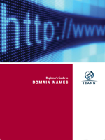 Beginner's Guide to Domain Names