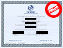 Example Fraud Certificate 1